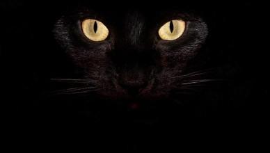 halloween-ex-caserma